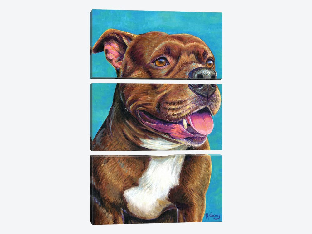 Staffordshire Bull Terrier Dog by Rebecca Wang 3-piece Canvas Art