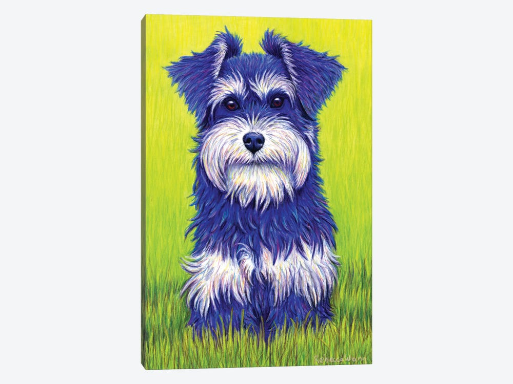 Curiosity - Miniature Schnauzer by Rebecca Wang 1-piece Canvas Artwork