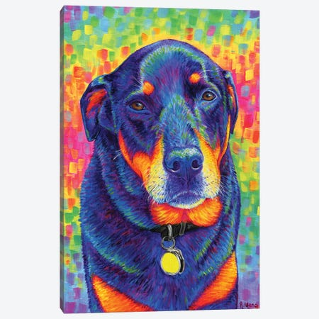 Rainbow Rottweiler Canvas Print #RBW80} by Rebecca Wang Canvas Art Print