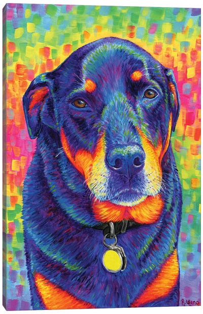 Rainbow Rottweiler Canvas Art Print