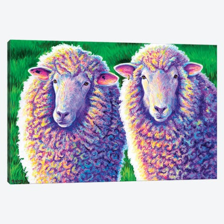 Two Colorful Sheep Canvas Print #RBW81} by Rebecca Wang Art Print