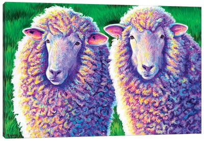 Two Colorful Sheep Canvas Art Print