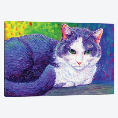 Vibrant Tuxedo Cat Canvas Print #RBW82} by Rebecca Wang Art Print