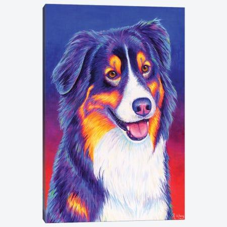Colorful Tricolor Australian Shepherd Canvas Print #RBW86} by Rebecca Wang Canvas Art