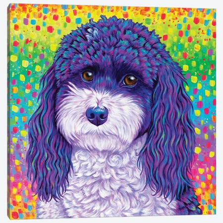 Party Poodle Canvas Print #RBW89} by Rebecca Wang Canvas Print