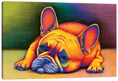 Daydreamer - French Bulldog by Rebecca Wang Canvas Art Print