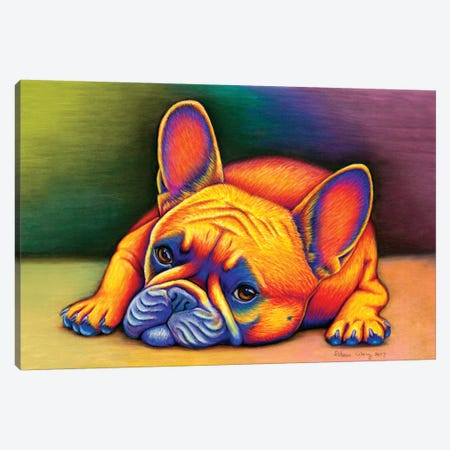 Daydreamer - French Bulldog Canvas Print #RBW8} by Rebecca Wang Art Print