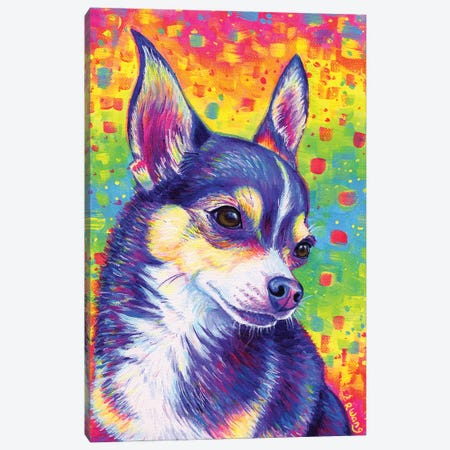 Psychedelic Rainbow Cute Chihuahua Canvas Print #RBW90} by Rebecca Wang Canvas Wall Art