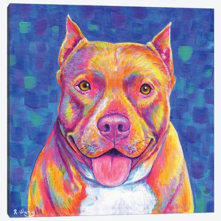 Rainbow Champagne Pitbull Canvas Print #RBW92} by Rebecca Wang Canvas Artwork