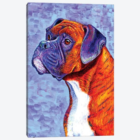 Devoted Guardian - Brindle Boxer Dog Canvas Print #RBW9} by Rebecca Wang Art Print