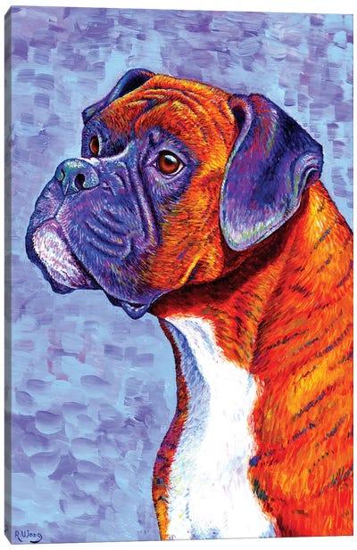 Devoted Guardian - Brindle Boxer Dog Canvas Art Print