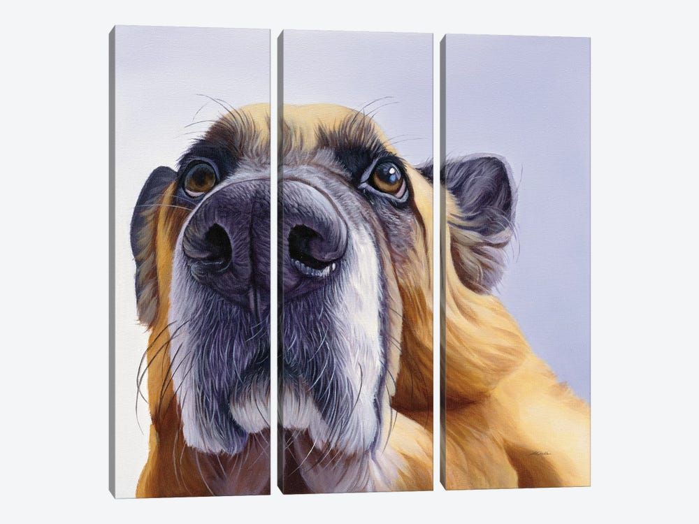 Smooch 3-piece Canvas Artwork