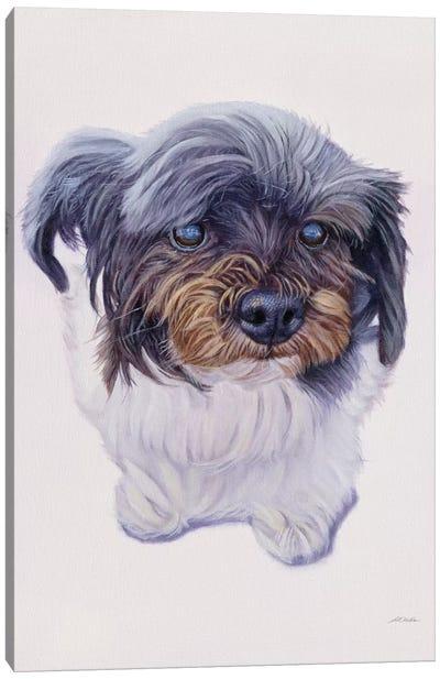 Mccoy Canvas Art Print