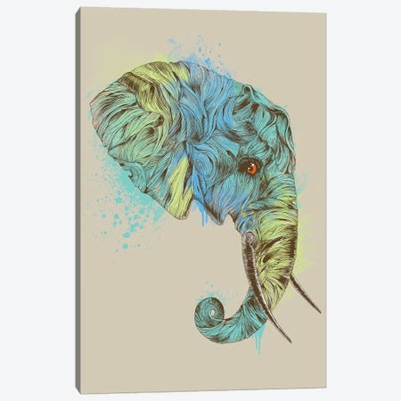 Elephant King Canvas Print #RCA17} by Rachel Caldwell Canvas Wall Art