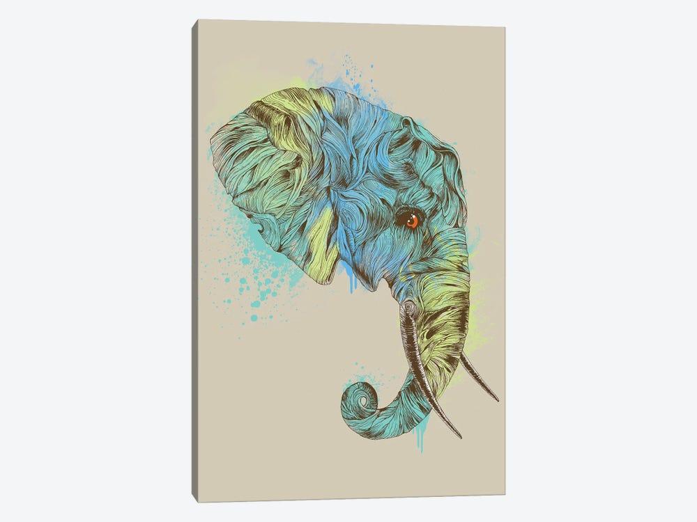 Elephant King by Rachel Caldwell 1-piece Canvas Wall Art