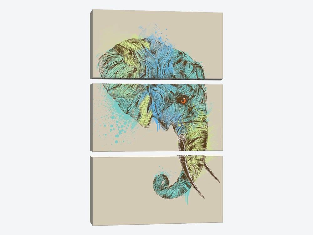 Elephant King by Rachel Caldwell 3-piece Canvas Art