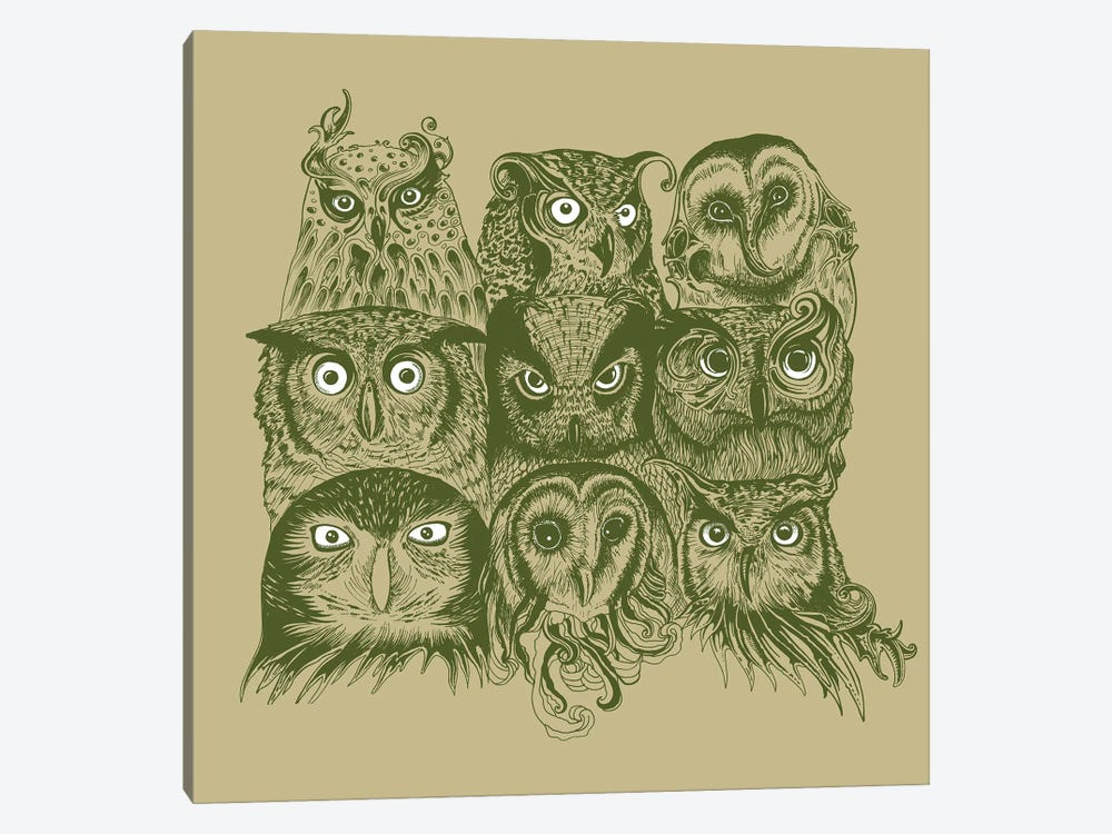 Nine Owls by Rachel Caldwell 1-piece Canvas Artwork