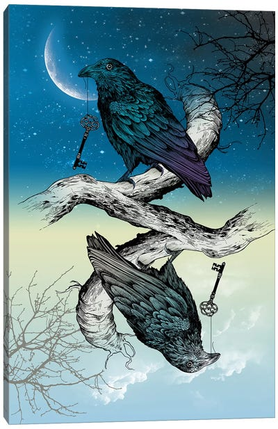 Raven Night And Day Canvas Art Print