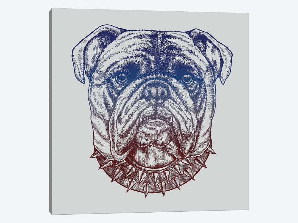Gritty Bulldog by Rachel Caldwell 1-piece Canvas Artwork