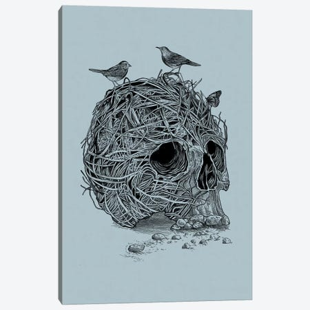 Skull Nest Canvas Print #RCA30} by Rachel Caldwell Canvas Print