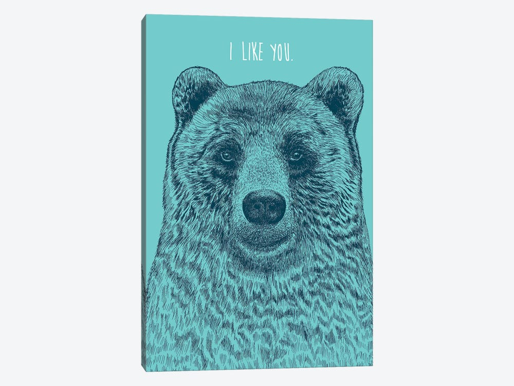 I Like You Bear by Rachel Caldwell 1-piece Canvas Wall Art