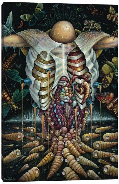 Feast Of The Havenots Canvas Art Print