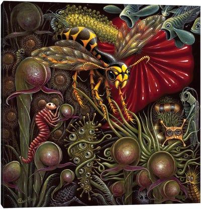 Flora Vs. Fauna Canvas Art Print