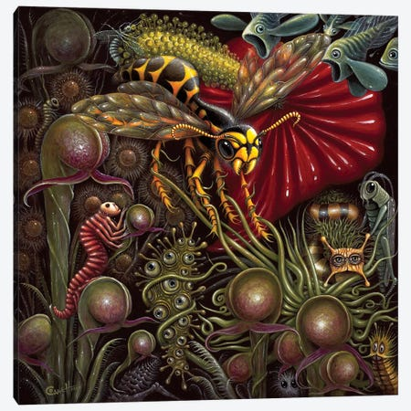 Flora Vs. Fauna Canvas Print #RCN11} by R.S. Connett Canvas Wall Art