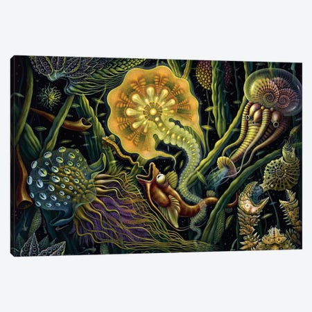 Light Creature Canvas Print #RCN13} by R.S. Connett Canvas Art