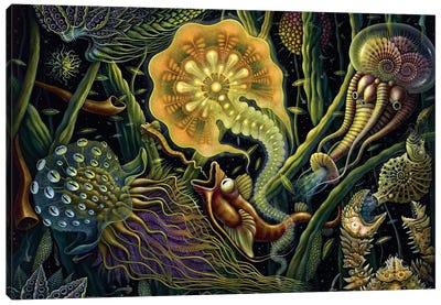 Light Creature Canvas Art Print