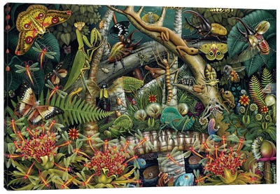 Mantis Mundi Canvas Art Print