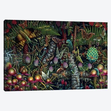 Microcosmic Garden Canvas Print #RCN18} by R.S. Connett Canvas Wall Art