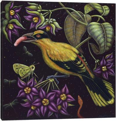 Birdfinger Canvas Art Print