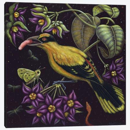 Birdfinger Canvas Print #RCN1} by R.S. Connett Canvas Art