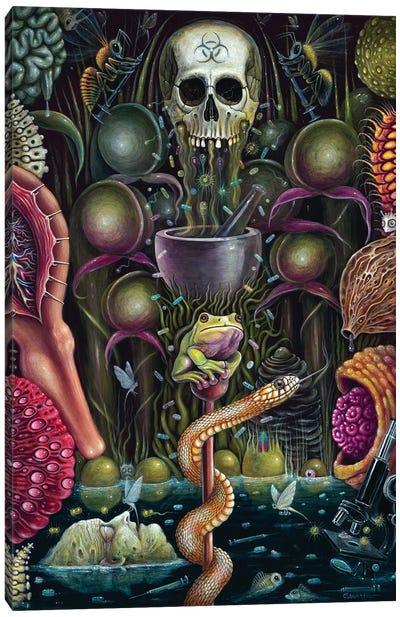 Pharma Garden Canvas Art Print