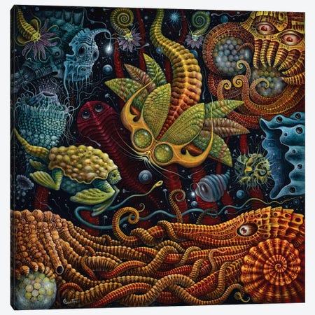 Seapods Canvas Print #RCN31} by R.S. Connett Canvas Art