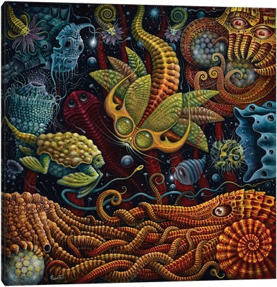 Seapods Canvas Art Print