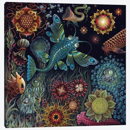 Starfish Canvas Print #RCN34} by R.S. Connett Canvas Print