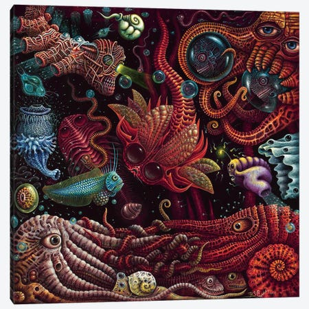 Crustaceapods Canvas Print #RCN4} by R.S. Connett Art Print