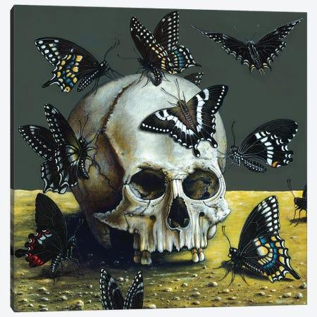 Dark Angels Canvas Print #RCN5} by R.S. Connett Canvas Art Print