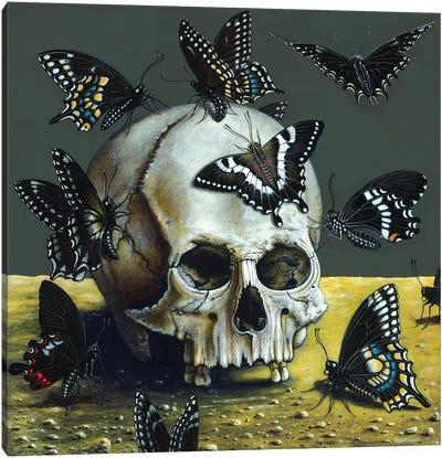 Dark Angels Canvas Art Print