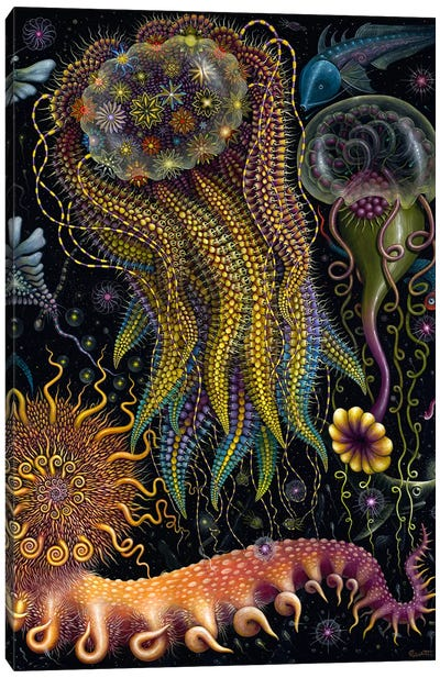 Devouring Starjelly Canvas Art Print
