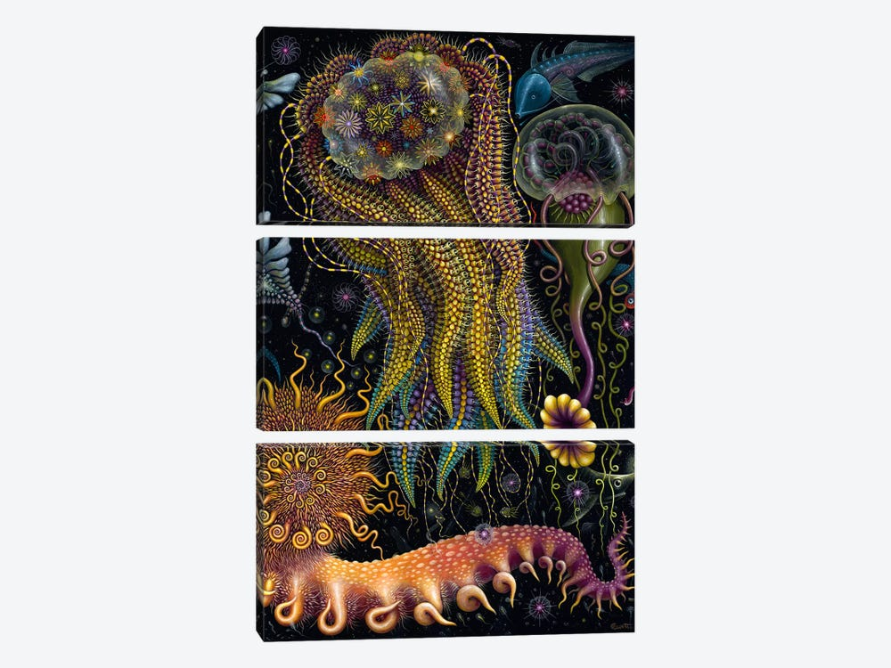 Devouring Starjelly by R.S. Connett 3-piece Art Print