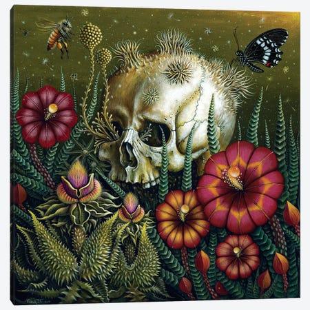 Dust Canvas Print #RCN8} by R.S. Connett Canvas Wall Art