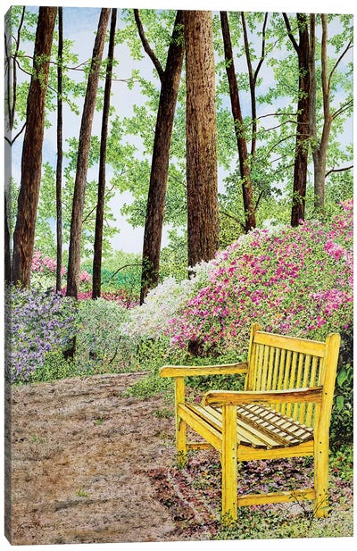 Nature Walks Canvas Art Print