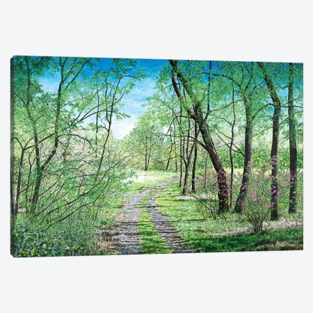 Spring's Poetry Canvas Print #RDD14} by James Redding Canvas Art
