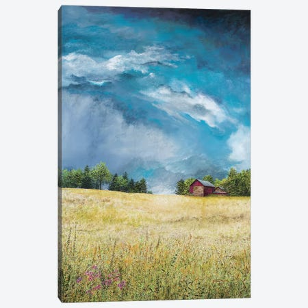 Approaching Storm Canvas Print #RDD16} by James Redding Canvas Wall Art