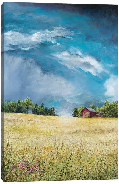 Approaching Storm Canvas Art Print