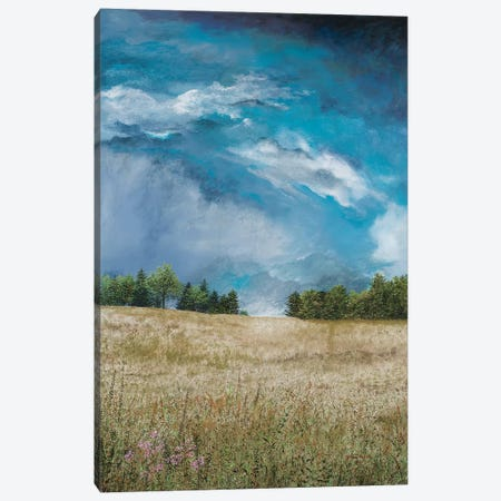 Approaching Storm (no barn) Canvas Print #RDD17} by James Redding Canvas Art