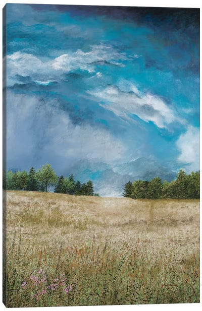 Approaching Storm (no barn) Canvas Art Print